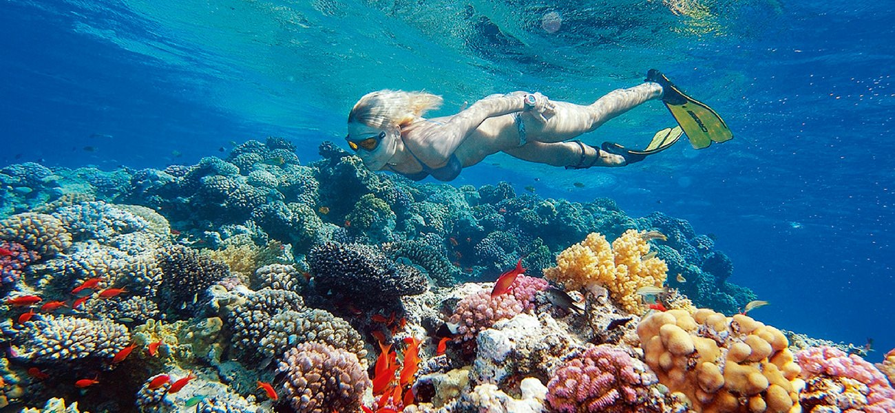 snorkeling set fish reef water fun yacht play sailing catamaran seychelles cat luxury holidays charter