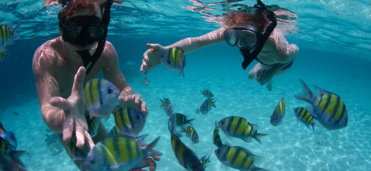 snorkeling set fish reef water fun yacht play sailing catamaran seychelles cat luxury holidays charter